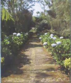 Arboretum Sumber Brantas 0003