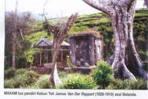 Gambar Kebun Teh Jamus Ngawi Wisata Kebun Teh Jamus Kabupaten Ngawi Wisata Jawatimuran