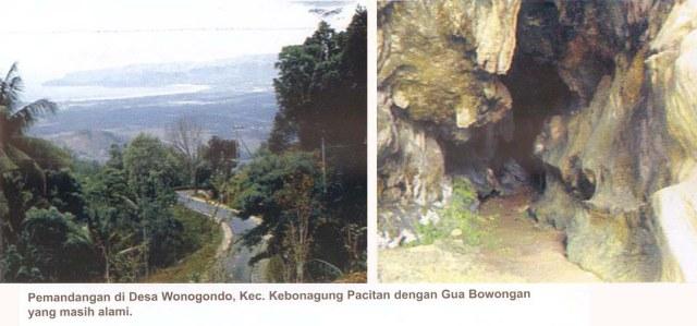 Arsip bawongan